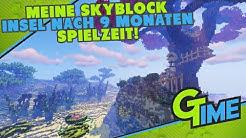 MEINE SKYBLOCK INSEL NACH 9 MONATEN SPIELZEIT! - MINECRAFT HYPIXEL SKYBLOCK DEUTSCH | GAMERSTIME