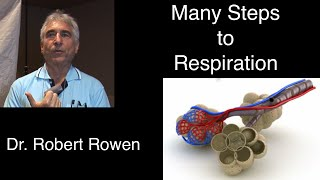 Oxygenation Basics - Dr Robert Rowen