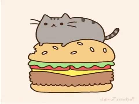 Cute Cat Images For Wallpaper Pushen Cat Youtube