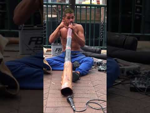 Koomurri Didgeridoo magic