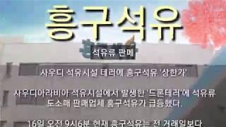 [세력주닷컴 상한가 정…