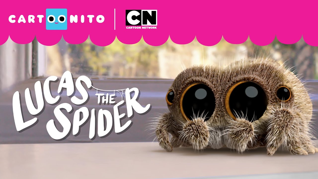 Lucas the Spider – Too Hot to Handle!