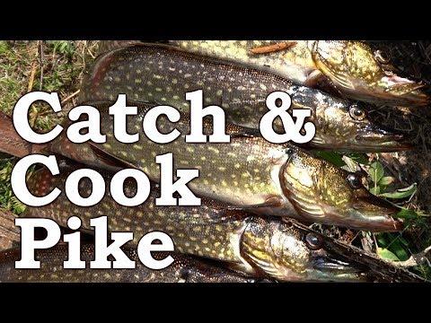 Catch n Cook Pike | Wild Spring Edibles | Burdock, Wild Mint, Nettle, Cattail, Garlic Mustard