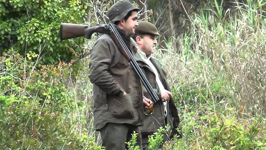 Resultado de imagem para imagens de caça e pesca