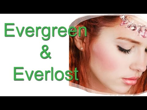 Fantasy 'View Epi 33 Evergreen And Everlost Review