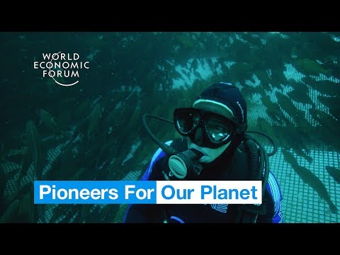 This innovative fish farm could revolutionise seafood production | Pioneers for Our Planet