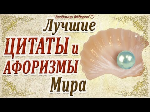 Лучшие Цитаты и Афоризмы Мира!