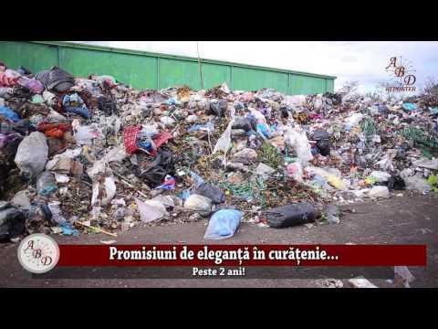 Promisiuni De Eleganță în Curățenie ...