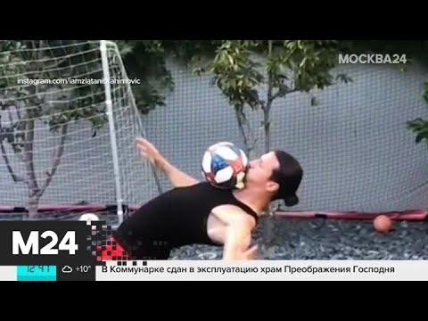 Футболист Златан Ибрагимович  бросил вызов Хабибу Нурмагомедову - Москва 24