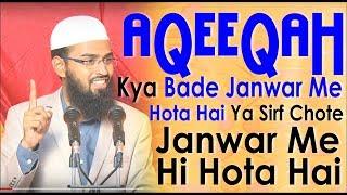 Aqeeqah Kya Bade Janwar Me Hota Hai Ya Sirf Chote Janwar Me Hi Hota Hai By Adv. Faiz Syed