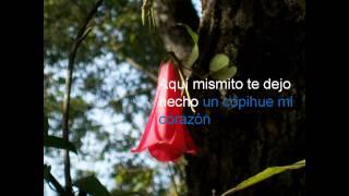 CHILE LINDO - LOS HUASOS QUINCHEROS- TIPO KARAOKE