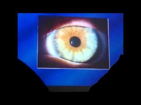 anatomia y fisiologia del ojo - YouTube