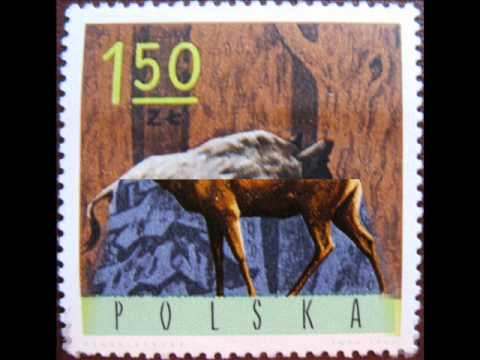 Even-toed ungulate (Briefmarken, Postage stamps)