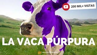 #40 - La Vaca Púrpura