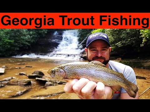 Georgia Trout Fishing