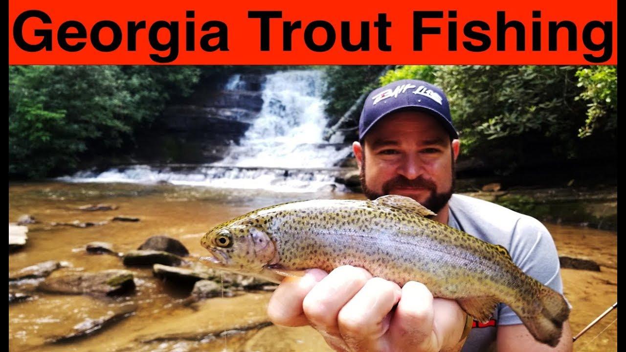 Georgia Trout Fishing
