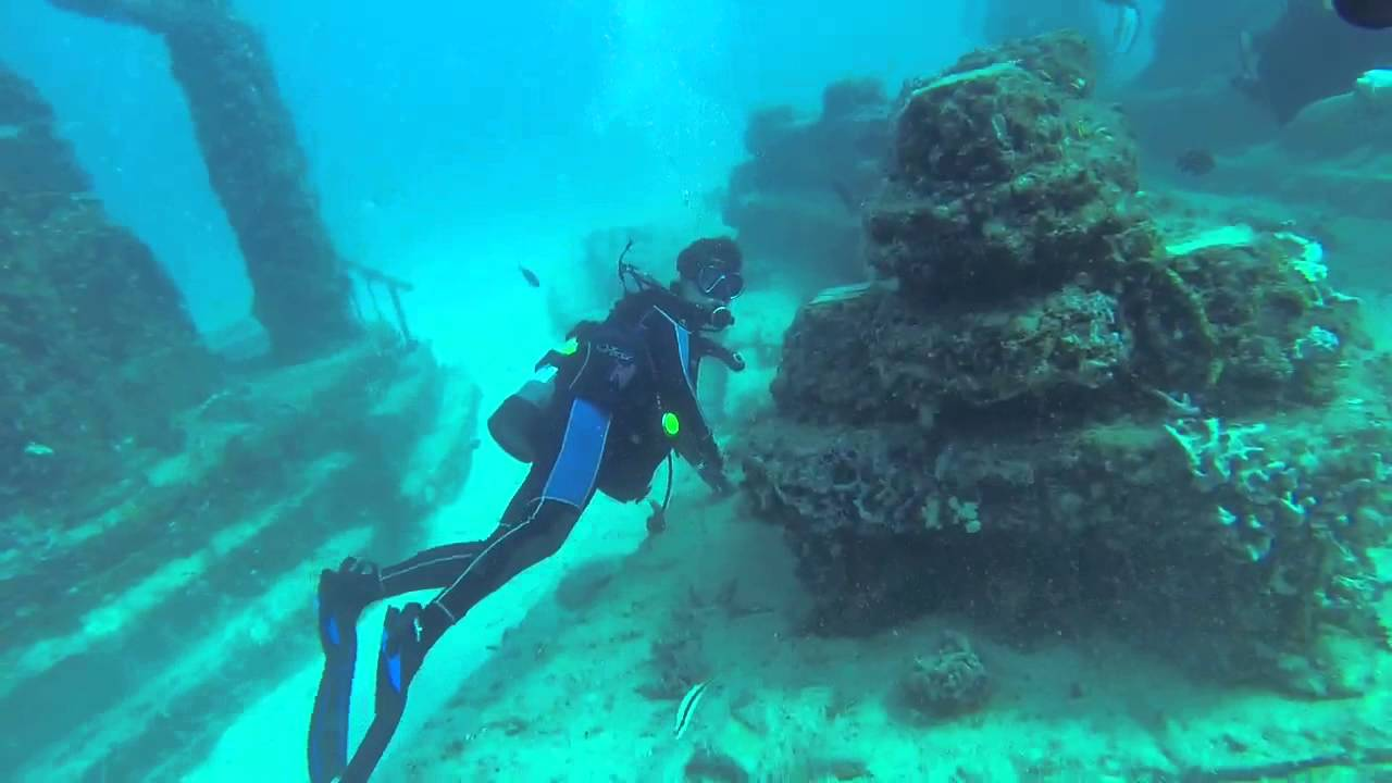 Scuba Dive Miami Beach The Best Beaches In World