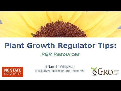 Plant Growth Regulator Electronic  Resources