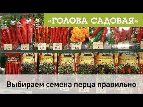 Голова садовая - Выбираем семена перца правильно