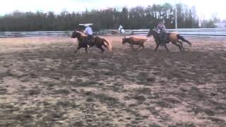 Capital R team roping
