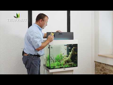 Quelle nourriture choisir pour vos poissons jardinerie for Aquarium 50l