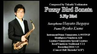 Fuzzy Bird Sonata 3