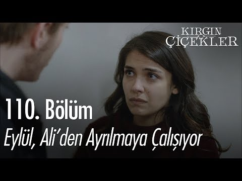 Eylül, Ali'den ayrılmaya çalışıyor - Kırgın Çiçekler 110. Bölüm