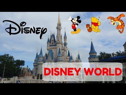 Boy vs. World - Disney World (PRIVATE TOUR EXPERIENCE)