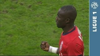 LOSC Lille - Toulouse FC (1-0) - Highlights (LOSC - TFC) - 2013/2014