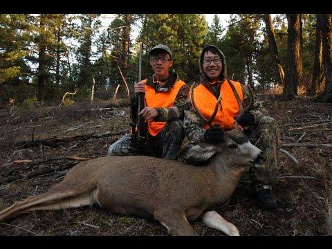 Washington State Rifle Mule Deer Hunt 2016