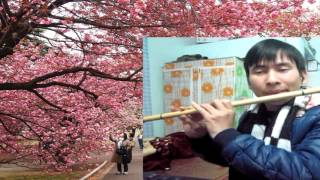 Người đến từ Triều Châu - sáo trúc Si giáng