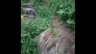 Дорога на водопад
