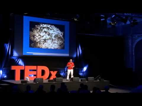 """TEDxBerlin 11/21/11 - Johnny West """"Give It Back! Oil and the Smart Citizen Dividend"""""""