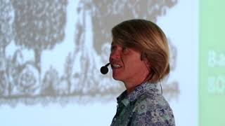 Revertendo o caminho da humanidade | Karin Hanzi | TEDxUFLA