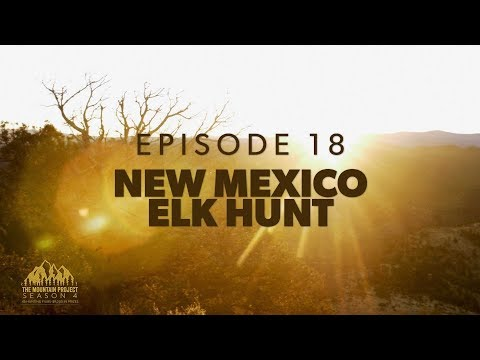 Nope, that moo-cow isn't a bear  - Ep.18 - New Mexico Rifle Elk Hunt