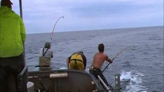 Jason Morris Tuna Fishing 2