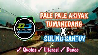 Pale Pale Akiyak Tumanedang Bikin Melayang Dj Topeng Remix