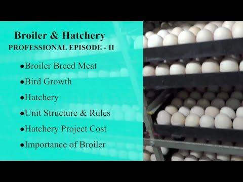 Broiler & Hatchery PROFESSIONAL EPISODE   II
