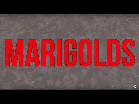 Cursive - Marigolds [OFFICIAL] lyric video Mp3