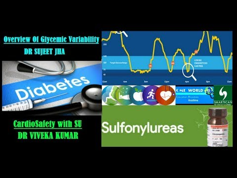 Overview Of Glycemic Variability & Cardiosafety With SU