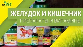 Пищеварительная система - Препараты для желудка и кишечника собак и кошек
