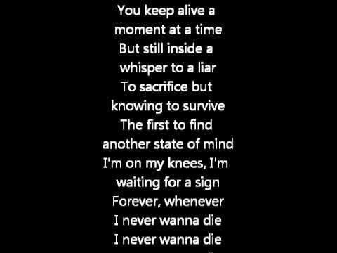 Foo Fighters - Walk lyrics - YouTube