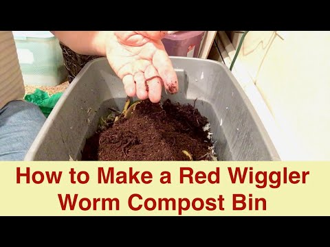 Red Wiggler Worm Compost Bin