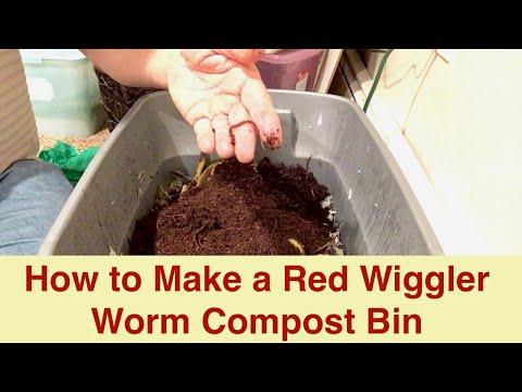 red-wiggler-worm-compost-bin