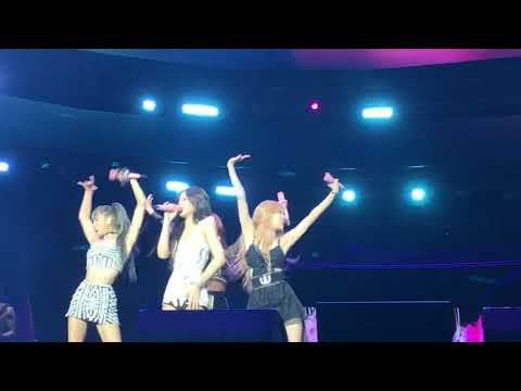BLACKPINK DON'T KNOW WHAT TO DO AT COACHELLA
