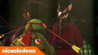 TMNT: Las Tortugas Ninja | La sabiduría de Splinter | Nickelodeon en Español