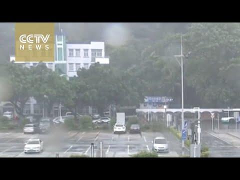 Typhoon Nida lands in south China's Shenzhen city, bringing gales and rain