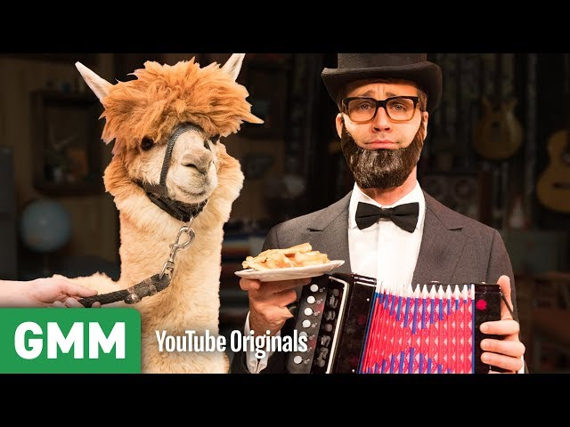 Attracting An Alpaca With An Accordion | Nowhere Else