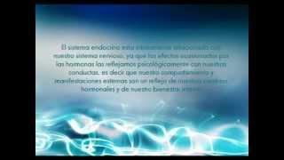 Sistema Nervioso & Endocrino