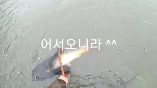 태풍속 ~ 잉어낚시 ^^